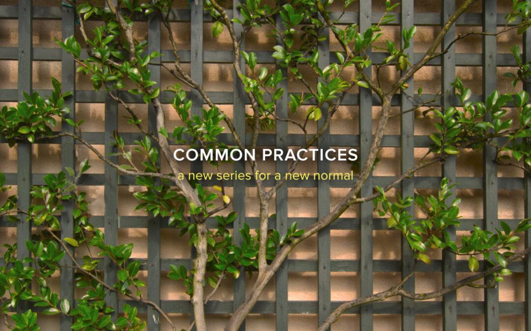 Common Practices, Part 9